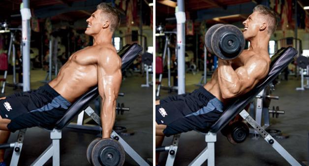 Lutande hantelcurls, hantelcurls biceps, bicepsövningar, bicepsövning, bra bicepsövning, få större biceps, få stora biceps, öka i biceps, öka bicepsstorlek, träna biceps