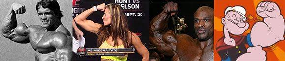 stora biceps, biceps programfå större biceps, få stora bicepts, träna biceps, hantelcurls biceps, bicepsövningar, bicepsövning, bra bicepsövning, öka i biceps, öka bicepsstorlek, träna biceps