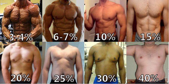 fettprocent, kroppsfett, kropssfettprocent, procent fett, deffa fettprocent, deffa fett, deffa bort fett, deffa kroppsfett, hur mycket kroppsfett, procent kroppsfett män, män kroppsfett, man kroppsfett, män fettprocent