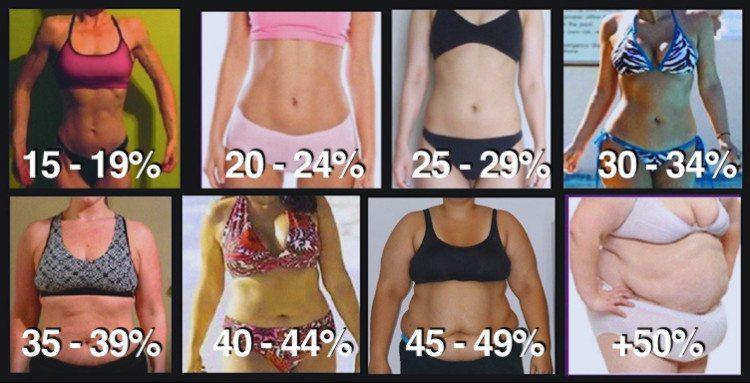 fettprocent kvinnor, kroppsfett kvinna, kropssfettprocent kvinnor, procent fett, deffa fettprocent, deffa fett, deffa bort fett, deffa kroppsfett, hur mycket kroppsfett, procent kroppsfett kvinna, tjej kroppsfett, kvinna kroppsfett, kvinnor fettprocent, deffa tjej, deffa kvinna,